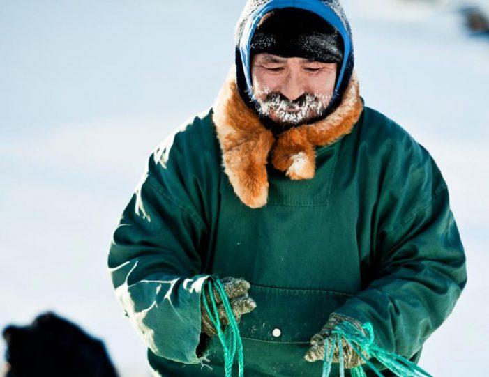 4-hour-dog-sledding-tour-kangerlussuaq-west-greenland - Guide to Greenland7