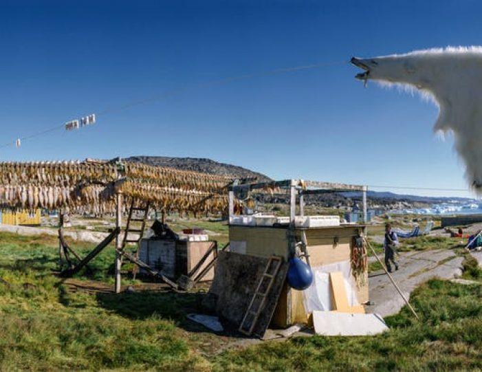 5-day-ilulissat-explorer-disko-bay - Guide to Greenland (10)