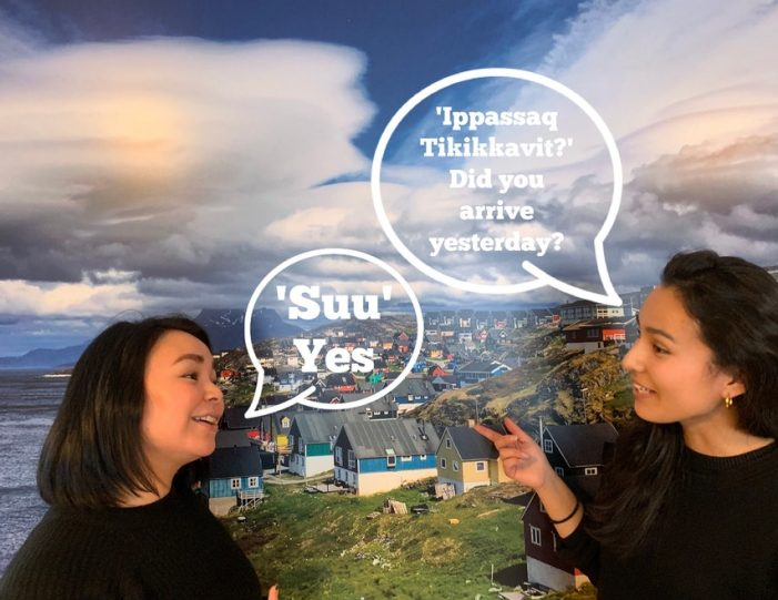 Crash Course in Greenlandic | Ilulissat-Guide to Greenland1