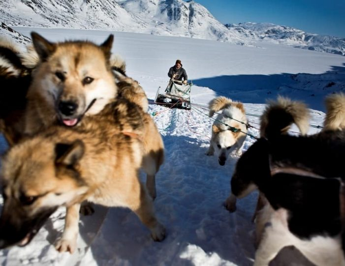Discover Dogsledding Sisimiut - Guide to Greenland1