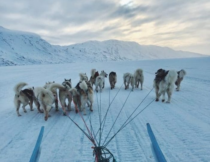 Discover Dogsledding Sisimiut - Guide to Greenland5