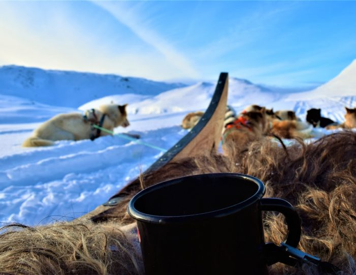 Dog Sled Expedition | Tasiilaq | East Greenland - Guide to Greenland1