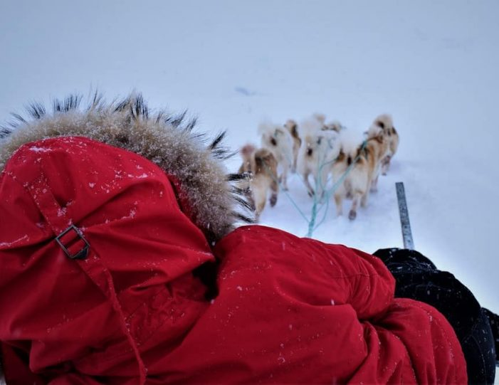 Dog Sled Expedition | Tasiilaq | East Greenland - Guide to Greenland2