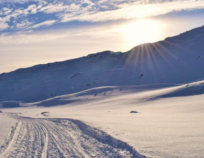 Dog Sled Expedition | Tasiilaq | East Greenland - Guide to Greenland6