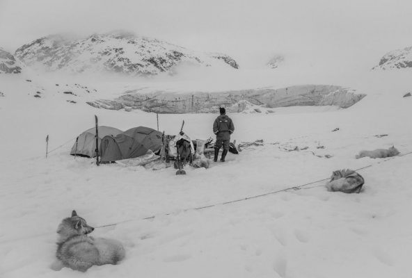 Dog Sled Expedition in East Greenland - Guide to Greenland9