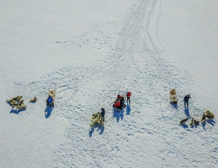 Dogsledding 2 hours Uummannaq North Greenland - Guide to Greenland13