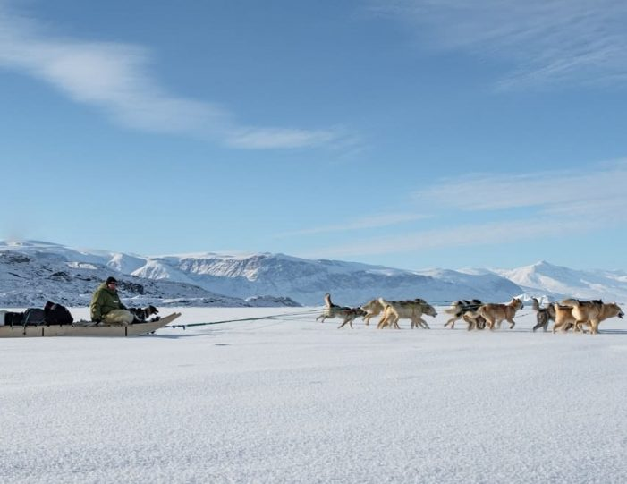 Dogsledding 2 hours Uummannaq North Greenland - Guide to Greenland14