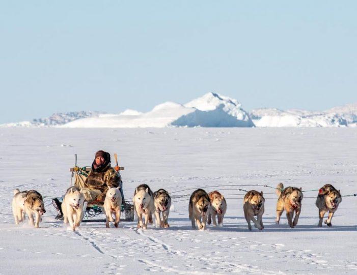 Dogsledding 2 hours Uummannaq North Greenland - Guide to Greenland2