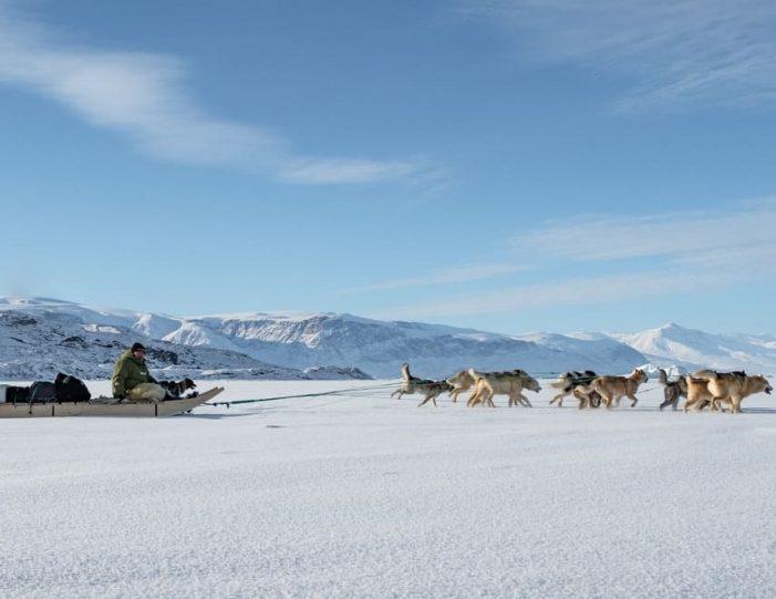 Dogsledding 2 hours Uummannaq North Greenland - Guide to Greenland4