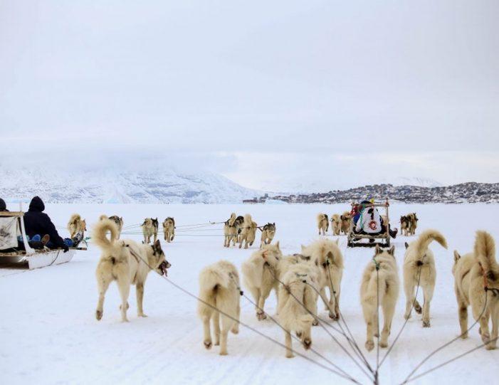 Dogsledding 2 hours Uummannaq North Greenland - Guide to Greenland6