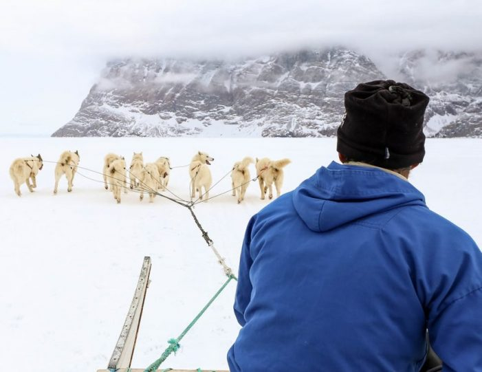 Dogsledding 2 hours Uummannaq North Greenland - Guide to Greenland7