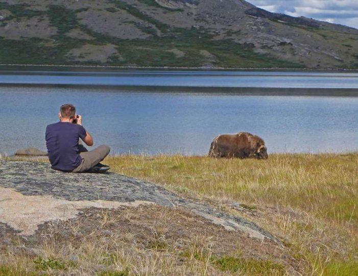 Hiking, Kayaking & Camping   Musk Ox Lake   Kangerlussuaq - Guide to Greenland10