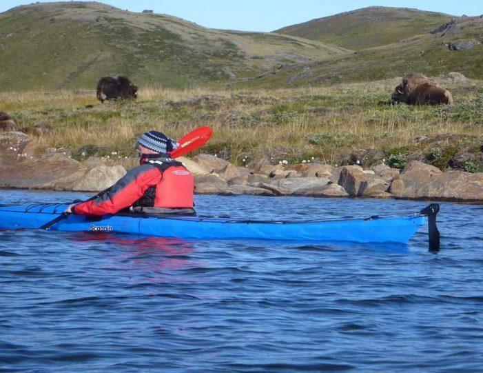 Hiking, Kayaking & Camping   Musk Ox Lake   Kangerlussuaq - Guide to Greenland14
