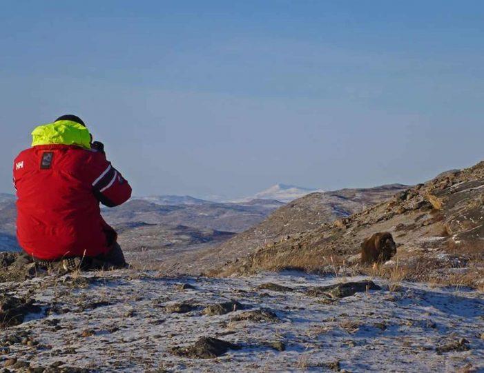 Hiking, Kayaking & Camping   Musk Ox Lake   Kangerlussuaq - Guide to Greenland18