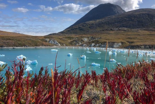 Icebergs - mountains of ice and wonder - Guide to Greenland12