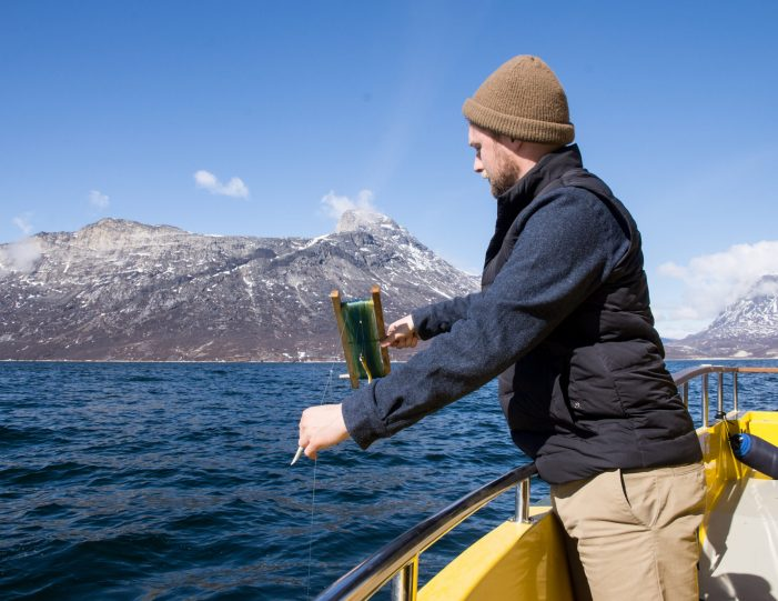 Man fishing in Nuuk Fjord during boat tour summer- Guide to Greenland