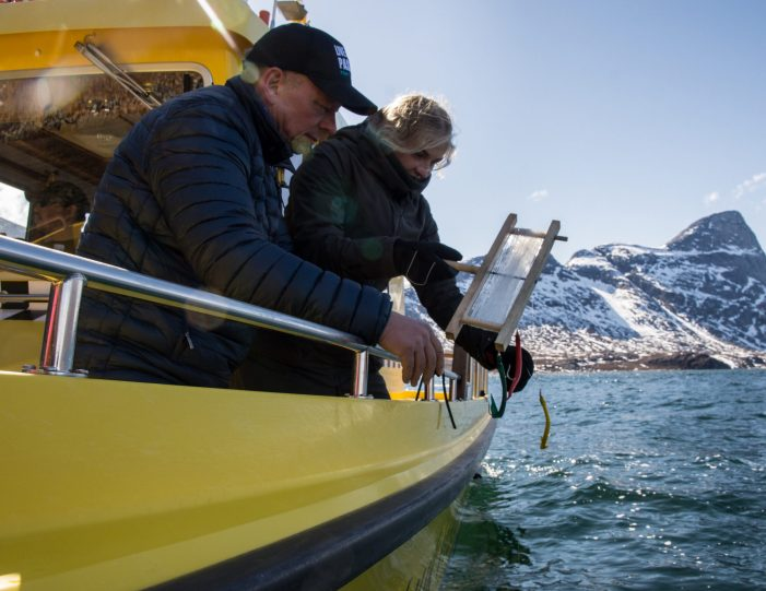 Man helping girl to fish in Nuuk fjord during bout tour, summer- Guide to Greenland