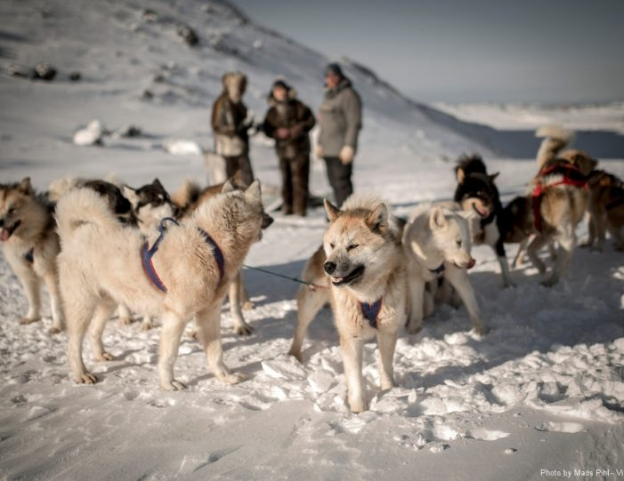 Multi-day Dogsledding from Tasiilaq East Greenland - Guide to Greenland10