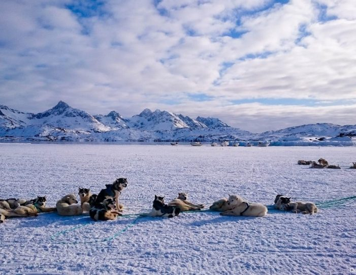 Multi-day Dogsledding from Tasiilaq East Greenland - Guide to Greenland15
