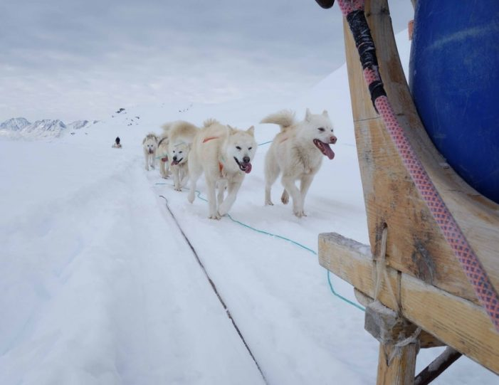 Multi-day Dogsledding from Tasiilaq East Greenland - Guide to Greenland20