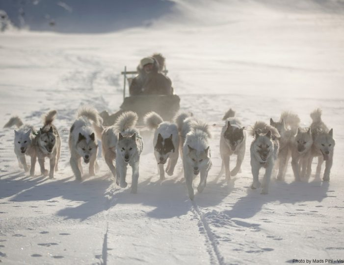 Multi-day Dogsledding from Tasiilaq East Greenland - Guide to Greenland5