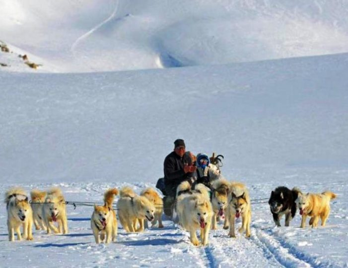 Multi-day Dogsledding from Tasiilaq East Greenland - Guide to Greenland6