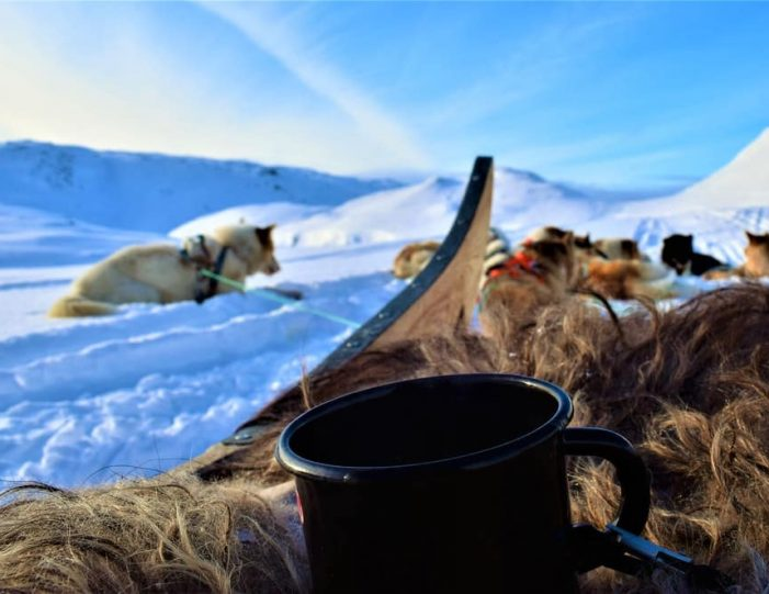 Settlement Tour By Dogsled | Tasiilaq | East Greenland - Guide to Greenland2