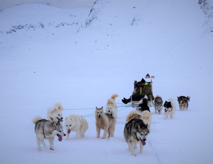 Settlement Tour By Dogsled | Tasiilaq | East Greenland - Guide to Greenland4