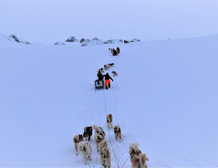 Settlement Tour By Dogsled | Tasiilaq | East Greenland - Guide to Greenland8