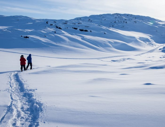 The Ultimate 8-day Arctic Winter Adventure _ Ilulissat _Guide to Greenland17
