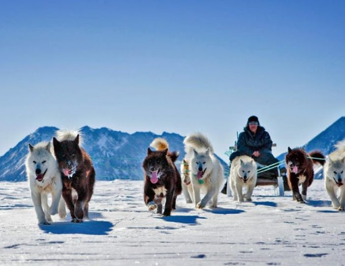 Two-day-dog-sled-adventure-kangerlussuaq - Guide to Greenland2