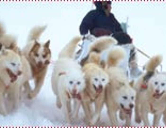 Two-day-dog-sled-adventure-kangerlussuaq - Guide to Greenland5