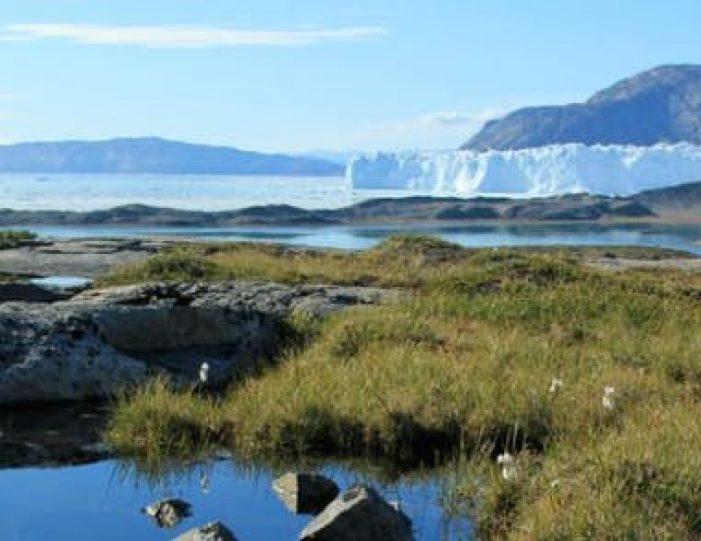 amazing-4-days-ilulissat-disko-bay - Guide to Greenland (11)
