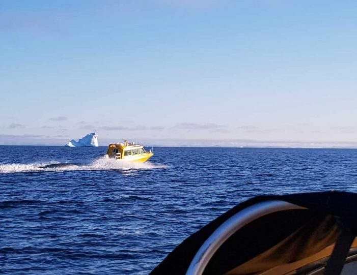 archaeological-sailing-experience-private-charter-qasigiannguit-disko-bay-Guide to Greenland7