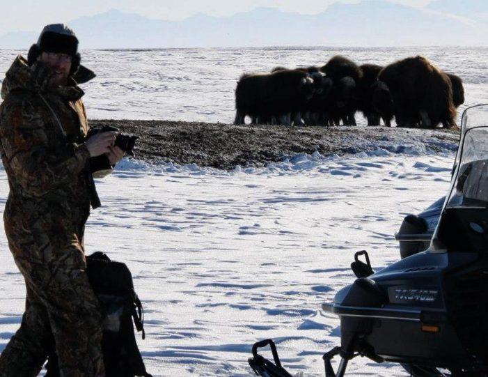 arctic-wildlife-safari-8-days-ittoqqortoormiit-east-greenland-Guide to Greenland14