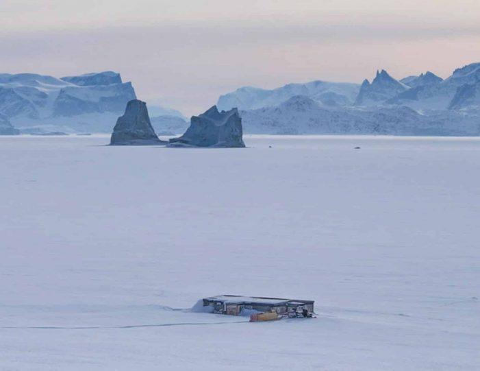 arctic-wildlife-safari-8-days-ittoqqortoormiit-east-greenland-Guide to Greenland21