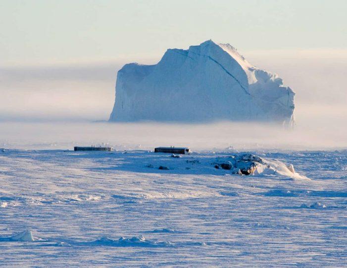 arctic-wildlife-safari-8-days-ittoqqortoormiit-east-greenland-Guide to Greenland22