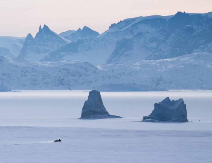 arctic-wildlife-safari-8-days-ittoqqortoormiit-east-greenland-Guide to Greenland23