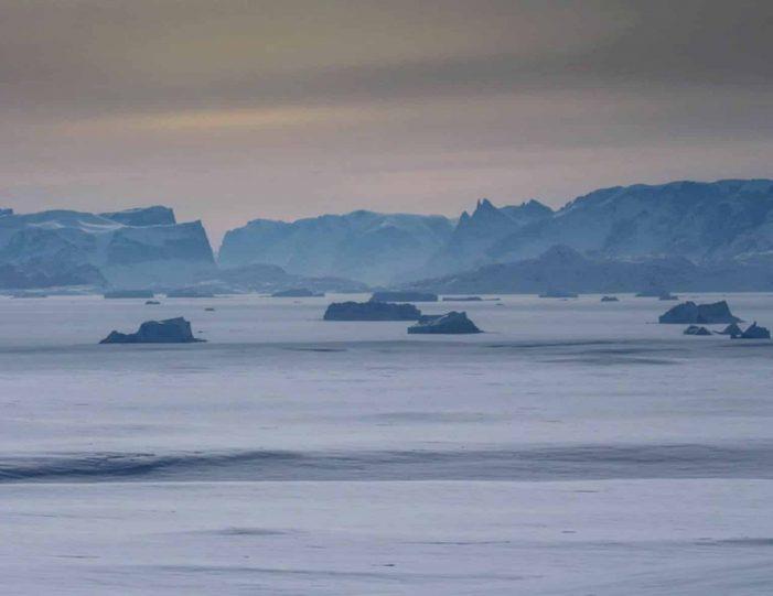 arctic-wildlife-safari-8-days-ittoqqortoormiit-east-greenland-Guide to Greenland24