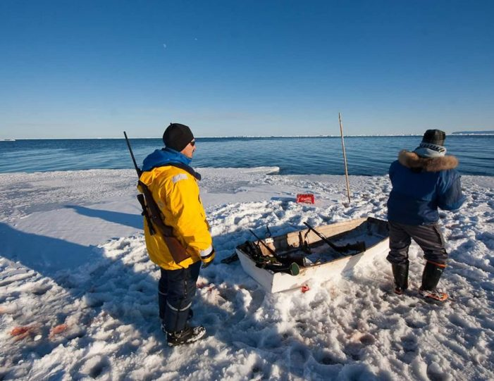 arctic-wildlife-safari-8-days-ittoqqortoormiit-east-greenland-Guide to Greenland28
