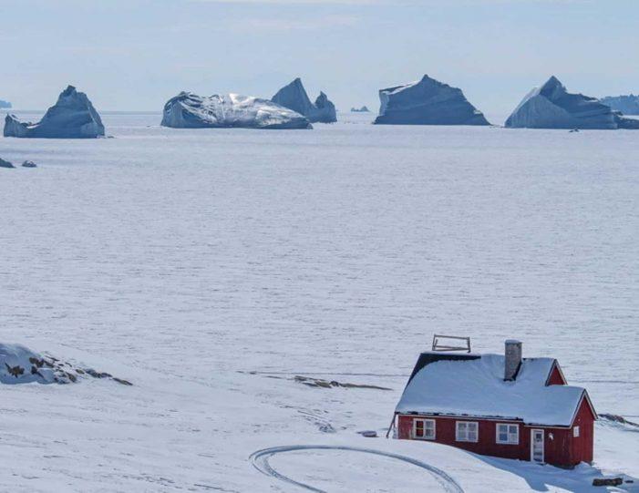 arctic-wildlife-safari-8-days-ittoqqortoormiit-east-greenland-Guide to Greenland30