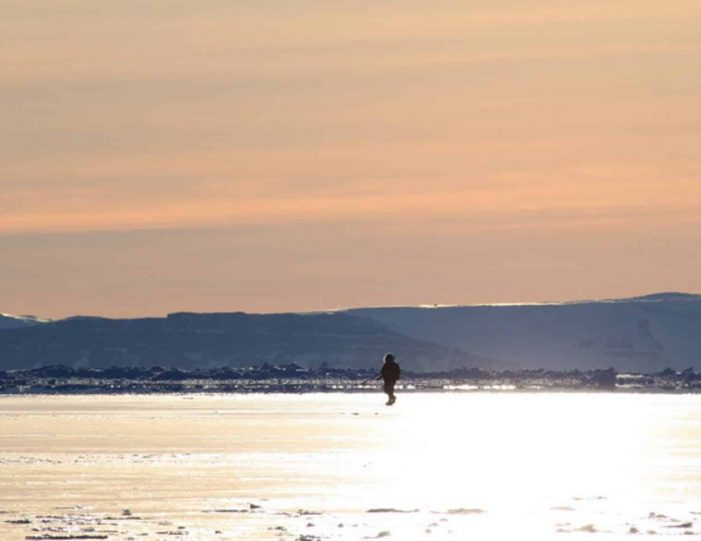 arctic-wildlife-safari-8-days-ittoqqortoormiit-east-greenland-Guide to Greenland33