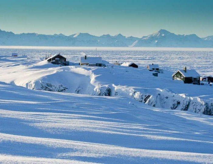 arctic-wildlife-safari-8-days-ittoqqortoormiit-east-greenland-Guide to Greenland34