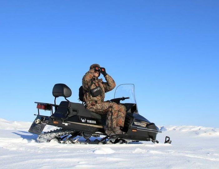 arctic-wildlife-safari-8-days-ittoqqortoormiit-east-greenland-Guide to Greenland37