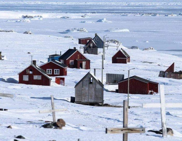 arctic-wildlife-safari-8-days-ittoqqortoormiit-east-greenland-Guide to Greenland38