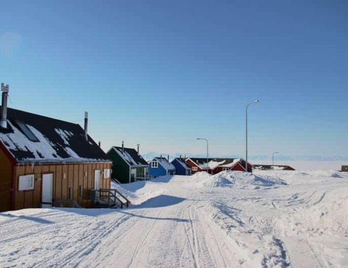 arctic-wildlife-safari-8-days-ittoqqortoormiit-east-greenland-Guide to Greenland39