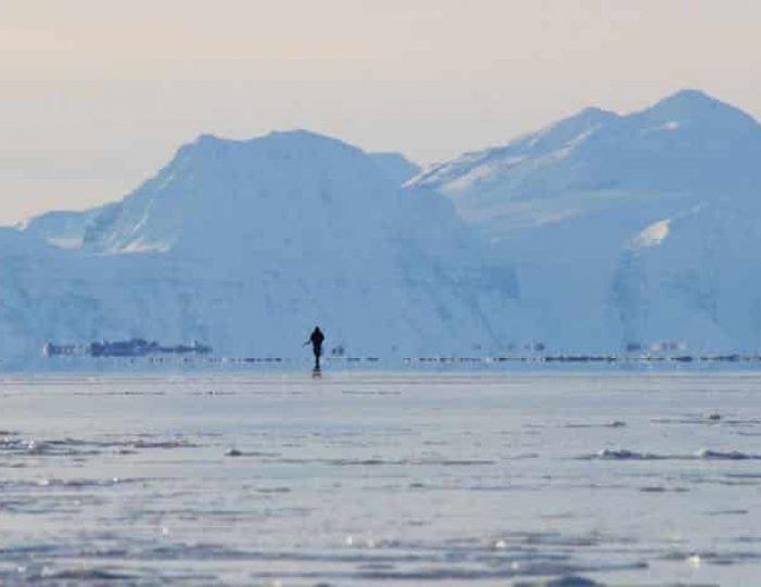 arctic-wildlife-safari-8-days-ittoqqortoormiit-east-greenland-Guide to Greenland41