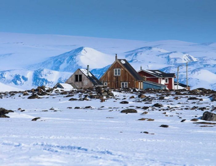 arctic-wildlife-safari-8-days-ittoqqortoormiit-east-greenland-Guide to Greenland9