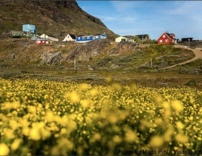 best-of-south-greenland-8-days-narsaq-Guide to Greenland2