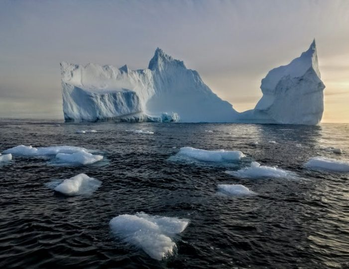 boat-tour-to-apusiaajik-glacier-kuummiit-settlement-east-greenland - Guide to Greenland9